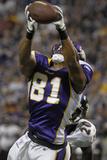 Ravens Vikings Football: Minneapolis  MN - Visanthe Shiancoe