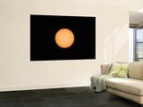 Sunspots on the Sun's Surface
