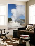 Castle Geyser Eruption  Upper Geyser Basin Geothermal Area  Yellowstone National Park  Wyoming
