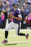 Bengals Ravens Football: Baltimore  MD - Joe Flacco