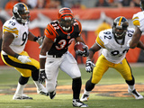 Steelers Bengals Football: Cincinnati  OH - Cedric Benson