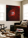 The Tadpole Nebula
