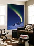 An Aurora Borealis Shooting Up from Toviktinden Mountain  Norway