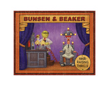 Bunsen &amp; Beaker: Hair Raising Thrills