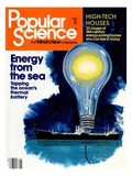 Front cover of Popular Science Magazine: May 1  1981