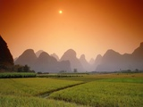 Rice fields an chalk mountains at twilight  Yangshou  Guangxi Province  China