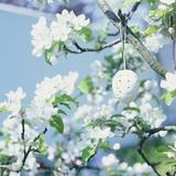 Easter Egg on Flowering Branch