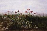 Flowers on the Irish Coast Giclée par Andrew Nicholl
