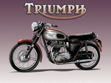 Triumph Bike