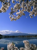 Japan: Mount Fuji and Lake Kawaguchi