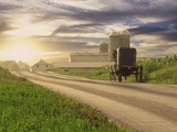 Amish Buggy on Road to Farm