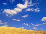 Cumulus Clouds and Wheat Fields in Fall  Washington
