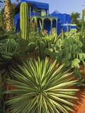 Majorelle Gardens in Marrakech