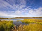 Tundra Marsh Papier Photo par John Eastcott & Yva Momatiuk