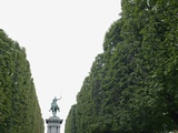 Equestrian statue between trees  Paris  France