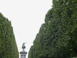 Equestrian statue between trees  Paris  France