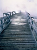 Boardwalk in fog  Yellowstone National Park  Wyoming