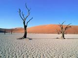 Desert in Namib Naukluft Park - Namibia