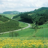 Landscape and country road in the Sauerland  Germany
