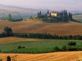 Italy  Tuscany  Val d&#39;Orcia  fields at sunrise