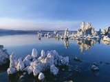 South Tufa  Tufa Towers  Mono Lake  California  USA