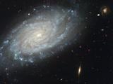 The spiral galaxy NGC 3370