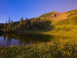 Tipsoo Lake and Naches Peak