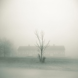 Foggy Morning Scene with Barn