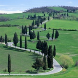 Country road  Tuscany  Italy (near Pienza)