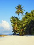 Beach at Soneva Fushi Resort in the Baa Atoll