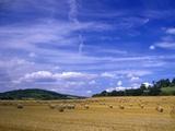 Rolls of Hay in Medmenham