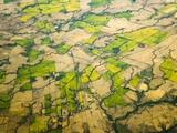 Green Agricultural Fields in Chile Papier Photo par John Eastcott & Yva Momatiuk
