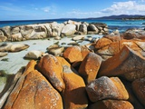Rocky Coastline at Bay of Fires