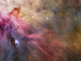 Gas and Dust in Orion Nebula