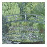 The Waterlily Pond: Green Harmony