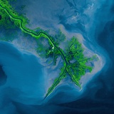 Mississippi Delta Acquired by the Landsat 7 Satellite