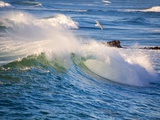 Heavy Surf off Cape Kiwanda on Oregon Coast