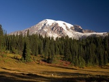 Fall Colors at Sunrise on Mount Rainier