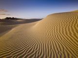 Sand Dunes of Isla Magdalena