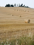 Bales of Hay on Tuscan Farm