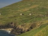 Farmhouses on Hill at Coast