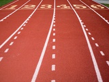 Synthetic Track Lanes