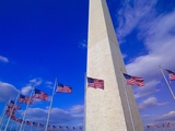 Flags Surrounding the Washington Monument