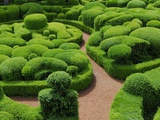 Topiary Garden at Chateau de Marqueyssac