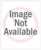 Aspergillus Versicolor Mold