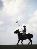Polo player riding polo pony