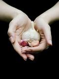 Handful of Garlic