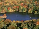 Lake in Central Park