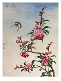 18th-Century Chinese Watercolor of Pink Flowers