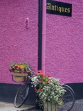 Bicycle and Flowers Outside Antique Store in Carrick